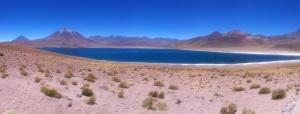 Lagunas Altiplânicas - Panorâmica
